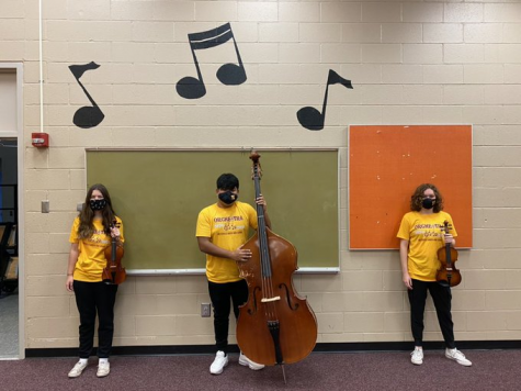 Orchestra members practice safe music. (Courtesy of Erin Mayle)