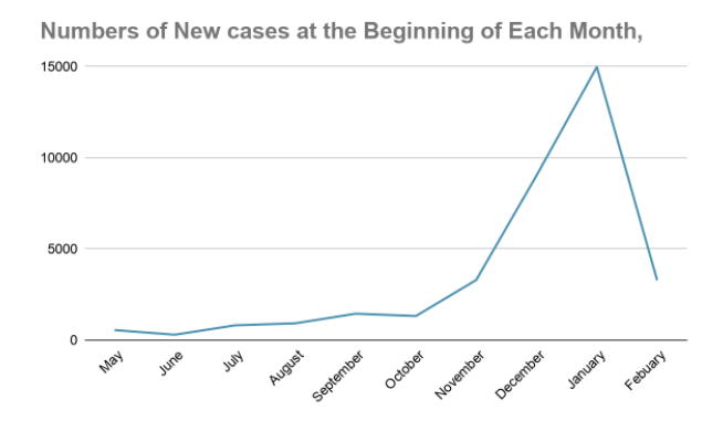 Number of new cases at the beginning of each month. Source: New York Times